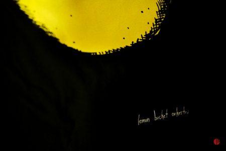 lemon bucket orkestra photos